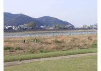 『長良川を美しくしよう運動』に今回も参加してきました。